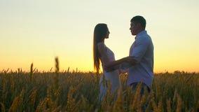Silueta feliz joven romántica de los pares en campo de trigo de oro en la puesta del sol Mujer y hombre que abrazan y que se besa almacen de video