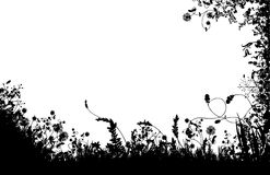 Silueta floral de los campos Foto de archivo libre de regalías