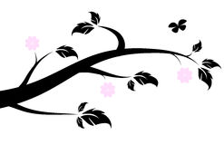 Silueta floreciente de la rama de la primavera Imagen de archivo