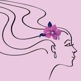 Silueta hermosa de la mujer Stock de ilustración