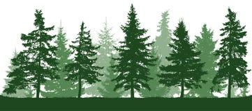 Silueta inconsútil de los abetos del bosque stock de ilustración
