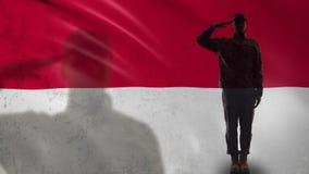 Silueta indonesia del soldado que saluda contra la bandera nacional, voluntario militar almacen de video