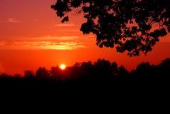 Silueta roja de la puesta del sol Fotos de archivo libres de regalías