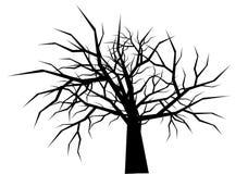 Silueta seca del árbol en el vector blanco del fondo Foto de archivo