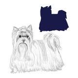 Silueta y bosquejo del perro del terrier de Yorkshire Foto de archivo libre de regalías
