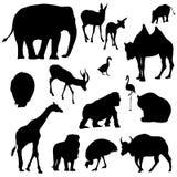 Siluetas animales Imágenes de archivo libres de regalías