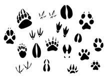 Siluetas animales de las huellas Imagen de archivo