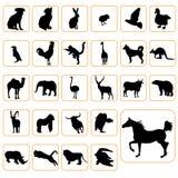 Siluetas animales fijadas Imagenes de archivo
