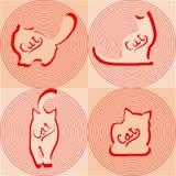 Siluetas beige de los gatos en diversas actitudes Imagen de archivo