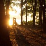 Siluetas - besos de los pares teniendo en cuenta el sol del verano Imagen de archivo