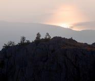 Siluetas de árboles Fotos de archivo libres de regalías