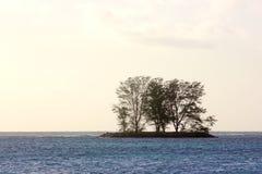 Siluetas de árboles en una isla minúscula Imágenes de archivo libres de regalías