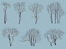 Siluetas de árboles sin las hojas con nieve. stock de ilustración