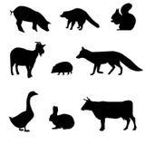 Siluetas de animales Fotografía de archivo libre de regalías