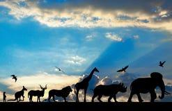 Siluetas de animales en puesta del sol nublada azul Imágenes de archivo libres de regalías