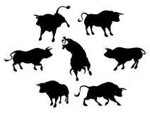 Siluetas de Bull Imagenes de archivo