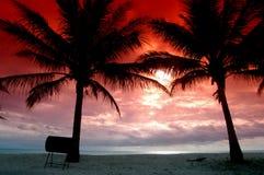 Siluetas de dos árboles de coco Imágenes de archivo libres de regalías