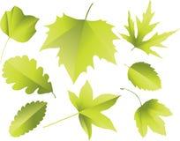 Siluetas de hojas ilustración del vector