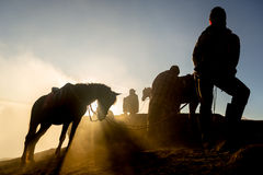 Siluetas de hombres y de los caballos Foto de archivo libre de regalías