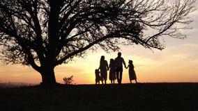 Siluetas de la familia feliz que caminan en el prado cerca de un árbol grande durante puesta del sol almacen de video
