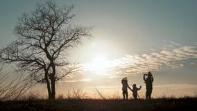 Siluetas de la familia feliz que caminan en el prado cerca de un ?rbol grande durante puesta del sol almacen de video
