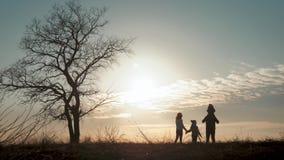 Siluetas de la familia feliz que caminan en el prado cerca de un ?rbol grande durante puesta del sol metrajes