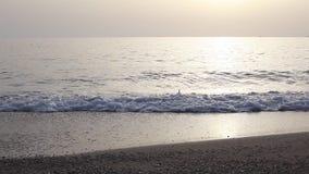 Siluetas de la muchacha de la mujer que corren en el mar de la puesta del sol almacen de metraje de vídeo