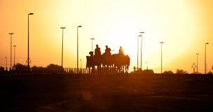 Siluetas de la puesta del sol del club el competir con de camello de Dubai de camellos Fotografía de archivo libre de regalías