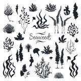 Siluetas de las algas marinas Arrecife de coral subacuático, planta exhausta del quelpo del mar de la mano, malas hierbas marinas stock de ilustración