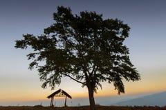 Siluetas de las chozas y de los árboles por la mañana antes de la salida del sol, silueta, Phu Lom Lo, Loei, Tailandia Imagenes de archivo