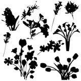 Siluetas de las flores Foto de archivo