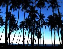 Siluetas de las palmeras Imágenes de archivo libres de regalías
