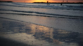 Siluetas de las palmeras contra el mar, puesta del sol almacen de metraje de vídeo