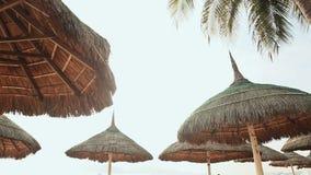 Siluetas de las sillas de playa en el cielo de la tarde en Vietnam con las palmeras Vista de paraguas de una cala en la playa almacen de metraje de vídeo