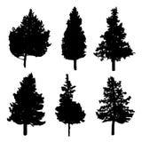 Siluetas de los árboles del abeto y de pino stock de ilustración