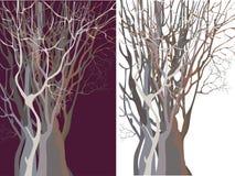 Siluetas de los árboles rechonchos Imagen de archivo libre de regalías