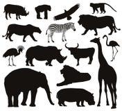 Siluetas de los animales Foto de archivo libre de regalías