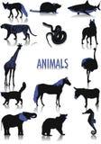 Siluetas de los animales Fotos de archivo