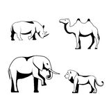 Siluetas de los animales africanos en un fondo blanco Fotografía de archivo libre de regalías