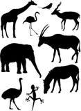 Siluetas de los animales del vector Imagen de archivo