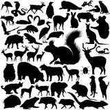 Siluetas de los animales salvajes ilustración del vector