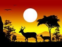 Siluetas de los ciervos de la belleza con el fondo del paisaje Foto de archivo libre de regalías