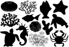 Siluetas de los organismos de la vida del océano, cáscaras, pescados, corales, caballo de mar, cangrejo y tortuga Fotos de archivo libres de regalías