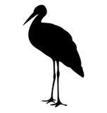 Siluetas de los pájaros de la cigüeña Fotos de archivo