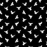 Siluetas de los pájaros - modelo inconsútil que vuela Paloma con un pico rojo y las piernas stock de ilustración