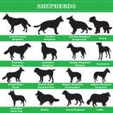 Siluetas de los pastores del vector stock de ilustración