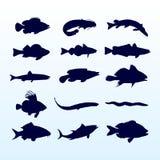 Siluetas de los pescados stock de ilustración