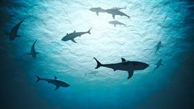 Siluetas de los tiburones subacuáticos en el océano contra luz brillante 3D rindi? la ilustraci?n imagen de archivo