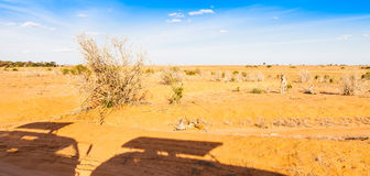 Siluetas de los vehículos del safari Imagenes de archivo