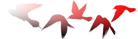Siluetas de pájaros como símbolo de la guerra Imagenes de archivo